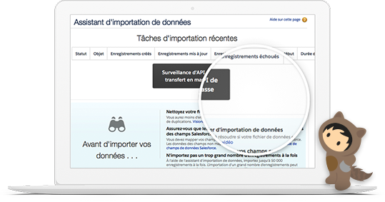 Dashboard of Data Import Wizard in Sales Cloud