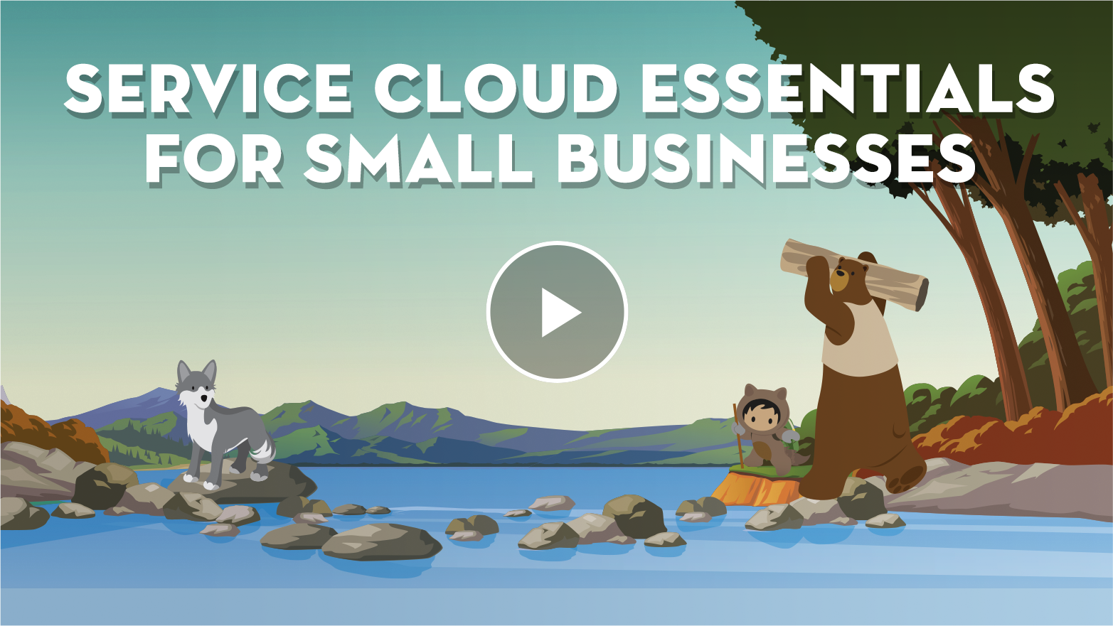 Service Cloud Essentials for Small Business