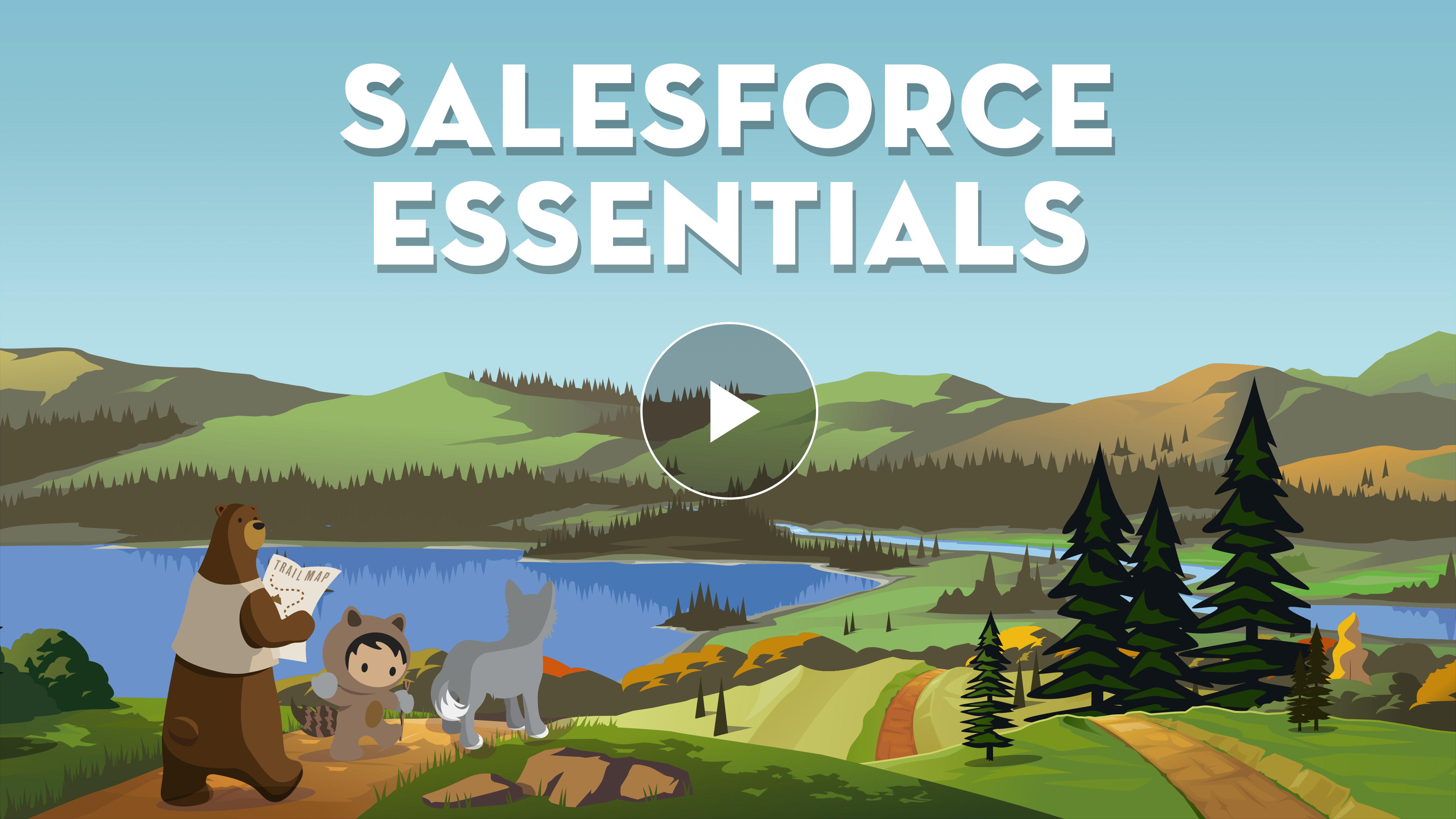 Sales Cloud Essentials Product Overview